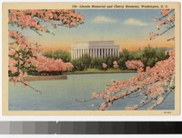 Lincoln Memorial and cherry blossoms, Washington D.C., 1930-1944