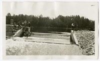 WPA Project No. 3209, Improvements to Chambers Park, Federalsburg, Maryland, July 26, 1938