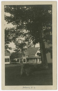 House and tree, Auburn, New Hampshire, 1901-1907