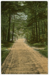 A shady drive in Auburn, New Hampshire, 1907-1914