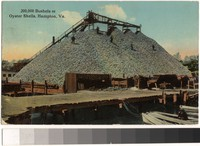 200,000 Bushels of Oyster Shells, Hampton, Virginia, 1907-1913