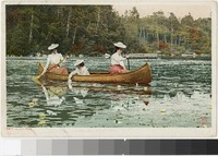 Women canoeing on a lily pond, 1902-1907