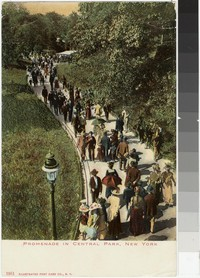 Promenade in Central Park, New York, New York, 1901-1907