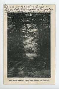 Road Scene, Swallow Falls, near Mountain Lake Park, in Maryland, 1901-1906