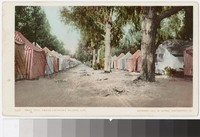 Tent City, Santa Catalina Island, California, 1904-1907