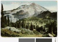 View of Mount Rainier, with forest in foreground, Washington, 1907-1910