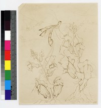 """Photographic reproduction of silverpoint showing insect and flowers with landscape in background -- (9"""" x 7"""". Black and white. Silverpoint by Thelma Wood)"""