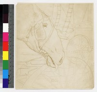 "Photographic reproduction of silverpoint showing head of horse among carriages -- (8"" x 7 1/2"". Black and white. Silverpoint by Thelma Wood. Signature on recto: ""TE Wood/NYC 1929."")"