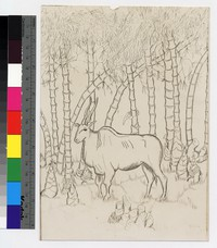 "Photographic reproduction of silverpoint showing bushbuck among bamboo trees -- (8 3/4"" x 6 1/4"". Black and white. Silverpoint by Thelma Wood)"