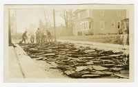 Curb and gutter work, Snow Hill, Worcester, MD, January 13, 1936
