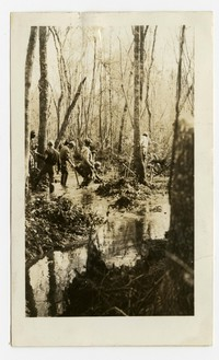 Clearing and grading tax ditches, Hebron, MD, November 18, 1935