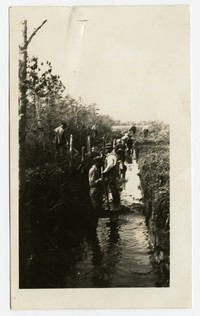 Clearing and grading tax ditches, Tyaskin, Maryland, November 18, 1935
