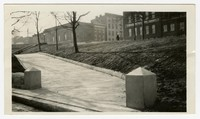 Grading and planting complete at Preston Gardens, Baltimore, Maryland, January 13, 1936