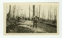Gambrill Park construction, Frederick County,��Maryland, November 26, 1935