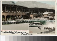Grand stand at the race track, Saratoga, New York, 1907-1908