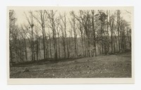 WPA Project No. 34, Improvements Keelty Tract, Baltimore, Maryland, October 15, 1935