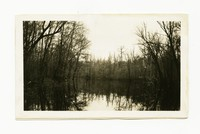 Clearing Pocomoke River Run, near Powellville, Wicomico County, Maryland, April 7, 1936