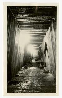 Tunnel for storm drain, Clifton Park, Baltimore, Maryland, January 14, 1936