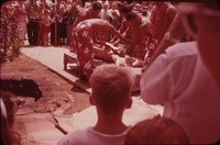 Preparation for a pig roast, Hawaii, undated