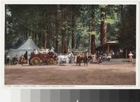 Stagecoach at Camp Curry, Yosemite Valley, California, 1907-1914
