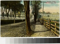 Lovers Lane, Middletown, Pennsylvania, 1907-1914