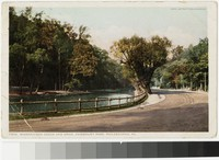Wissahickon Creek and Drive, Fairmount Park, Philadelphia, Pennsylvania, 1907-1914