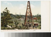 Oil wells, Titusville, Pennsylvania, 1901-1907