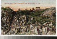 Pasture at the palisades, Weehawken, New Jersey, 1907-1914