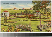 Rose Gardens, Allentown, Pennsylvania, 1931-1951