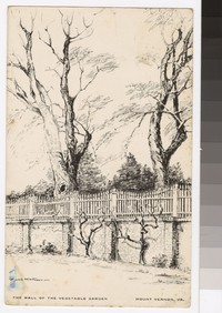 Artist's depiction of the wall of the vegetable garden at Mount Vernon, Virginia, 1930