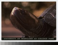 University of Maryland at College Park, College Park, Maryland, 1988